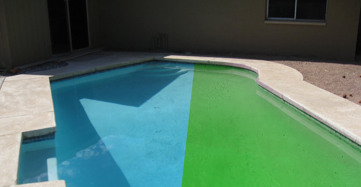 Green Pool to Clean Pool